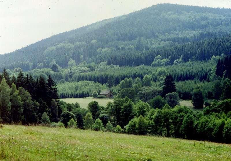 Neubau Panorama